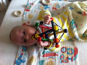 Skwish Manhattan Toy